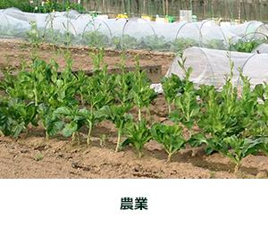 農業・食品加工